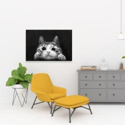 Canvas 24 x 36 - Curious cat
