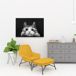 Canvas 24 x 36 - Curious cat