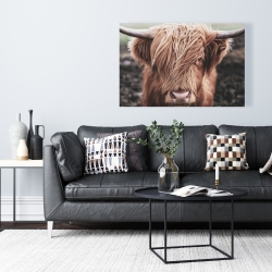 Canvas 24 x 36 - Desaturated highland cow