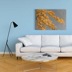 Canvas 24 x 36 - Golden wattle plant