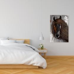Canvas 24 x 36 - Proud brown horse