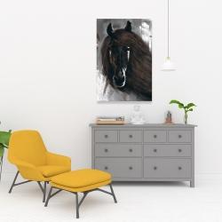 Canvas 24 x 36 - Dark brown horse