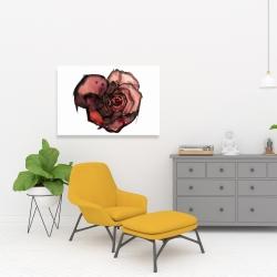Canvas 24 x 36 - Dark rose