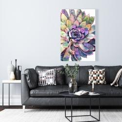 Canvas 24 x 36 - Multicolored succulent