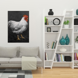 Canvas 24 x 36 - Grey rooster 2