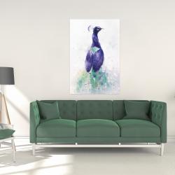Canvas 24 x 36 - Graceful peacock