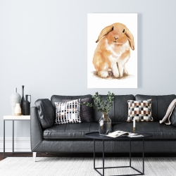 Canvas 24 x 36 - Lop-rabbit