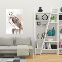 Canvas 24 x 36 - Barn owl