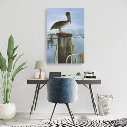 Canvas 24 x 36 - Pelican