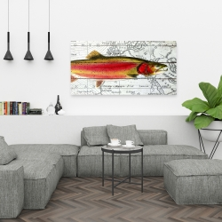 Canvas 24 x 48 - Pink trout on a map