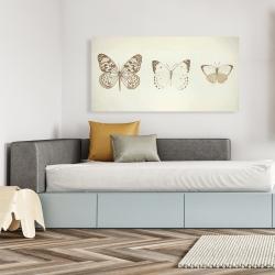 Canvas 24 x 48 - Sepia butterflies