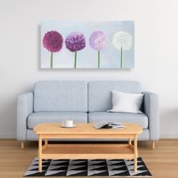 Canvas 24 x 48 - Dahlia pompon
