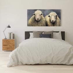 Canvas 24 x 48 - Wool sheeps