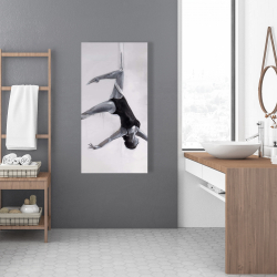 Canvas 24 x 48 - Dancer on aerial silks