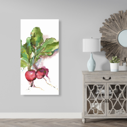Canvas 24 x 48 - Watercolor radish