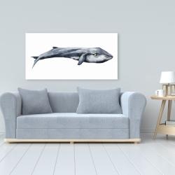 Canvas 24 x 48 - Watercolor whale