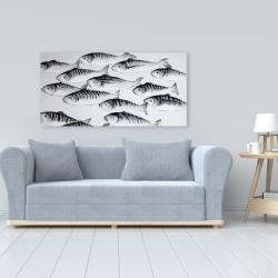 Canvas 24 x 48 - Gray school of fish