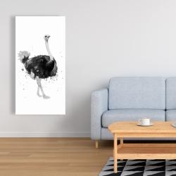 Canvas 24 x 48 - Proud ostrich