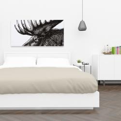 Canvas 24 x 48 - Moose plume