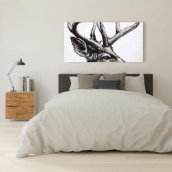 Canvas 24 x 48 - Roe deer plume