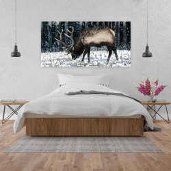 Canvas 24 x 48 - Caribou in the winter forest