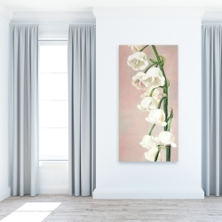 Canvas 24 x 48 - Lily of the valley flowers