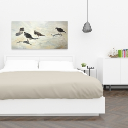 Canvas 24 x 48 - Sandpiper birds