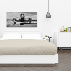 Canvas 24 x 48 - Grayscale plane