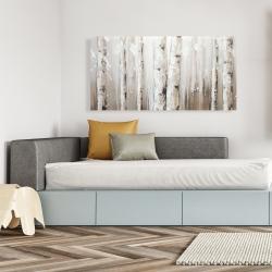 Canvas 24 x 48 - White birches on gray background