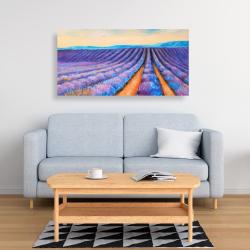 Canvas 24 x 48 - Lavender fields