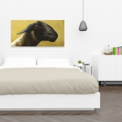 Canvas 24 x 48 - Young ram