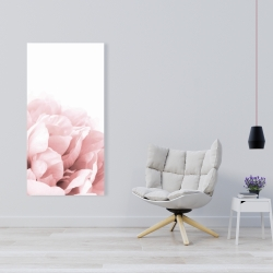 Canvas 24 x 48 - Peony flower dream