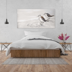 Canvas 24 x 48 - Two sandpipiers birds