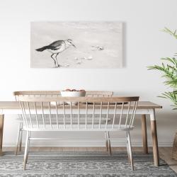Canvas 24 x 48 - Semipalmated sandpiper