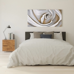 Canvas 24 x 48 - White rose closeup