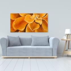Canvas 24 x 48 - Orange flower closeup