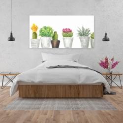 Canvas 24 x 48 - Mini cactus and succulents