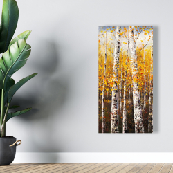 Canvas 24 x 48 - Birches by sunny day