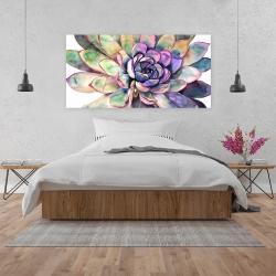 Canvas 24 x 48 - Multicolored succulent