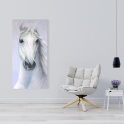 Canvas 24 x 48 - Powerful white horse
