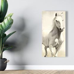 Canvas 24 x 48 - Gallant white horse