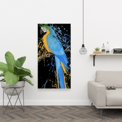 Canvas 24 x 48 - Blue macaw parrot