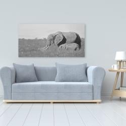 Canvas 24 x 48 - Elephants in the savannah