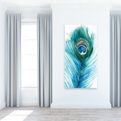 Canvas 24 x 48 - Long peacock feather