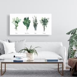 Canvas 24 x 48 - Fine herbs