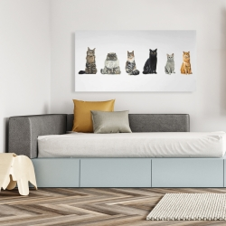 Canvas 24 x 48 - Six cats lined up