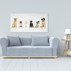 Canvas 24 x 48 - Man's best friend