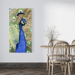 Canvas 24 x 48 - Peacock