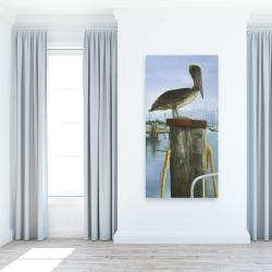 Canvas 24 x 48 - Pelican