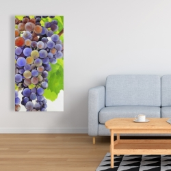 Canvas 24 x 48 - Bunch of grapes